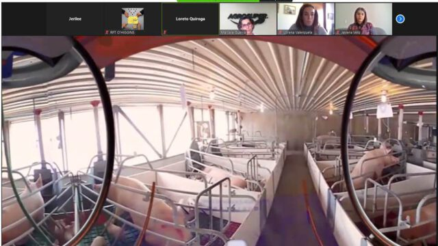 Estudiantes de educación técnico profesional especialidad Gastronomía participan de recorrido virtual por planta de Agrosuper